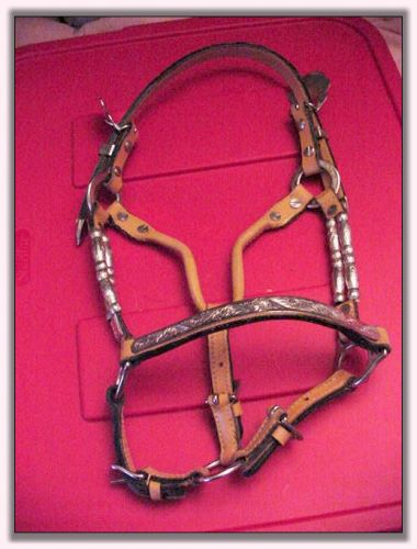 Miniature Silver Show Halter For Sale